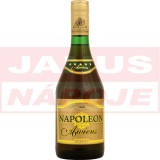 Napoleon Awiens 28% 0,7L